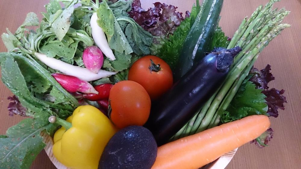 八色の野菜1