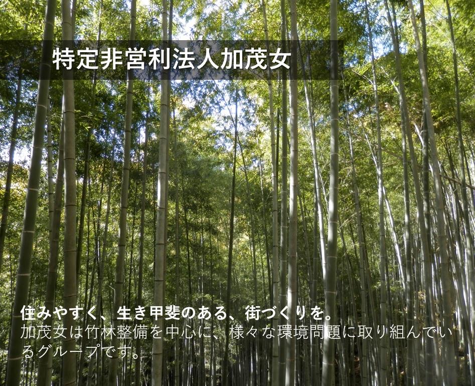 住みやすく、生き甲斐のある、街づくりを。 加茂女は竹林整備を中心に、様々な環境問題に取り組んでいるグループです。